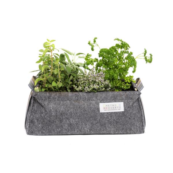 Lettuce & Basil